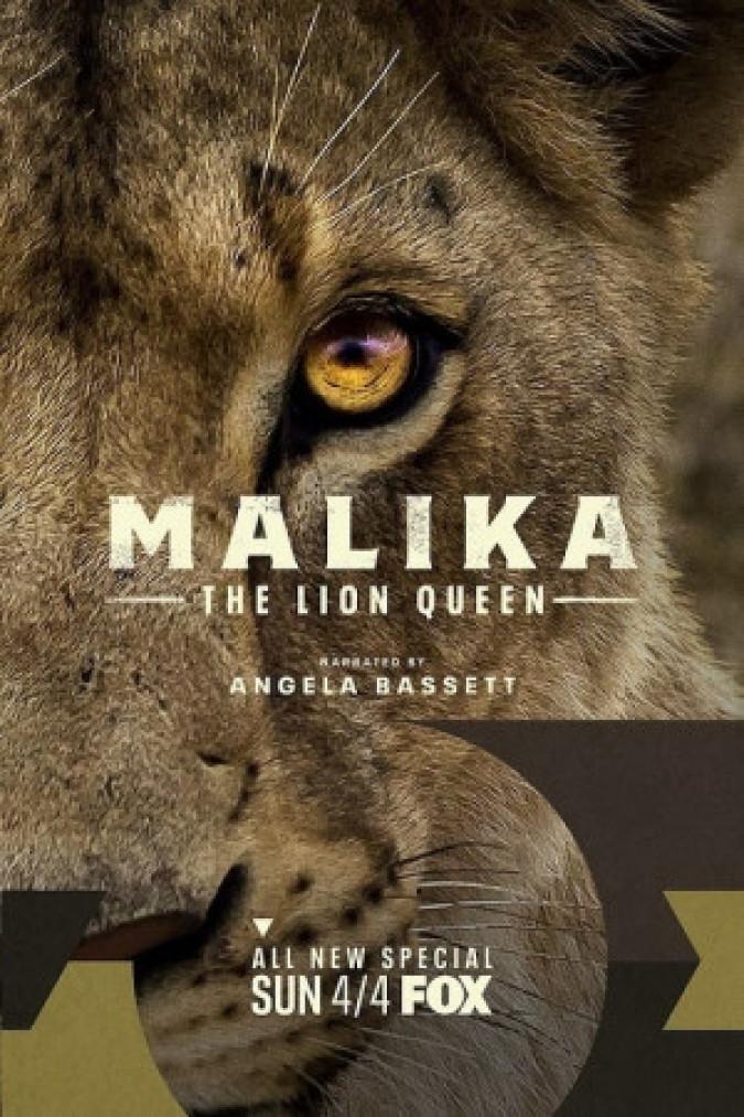 Malika The Lion Queen كوردبێست